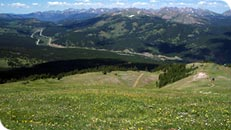 A view of the valley below one of Copper Mountain's peaks